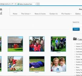 Web Design School Website Gallery