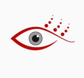 Web Design Vision for Red Swirl Design