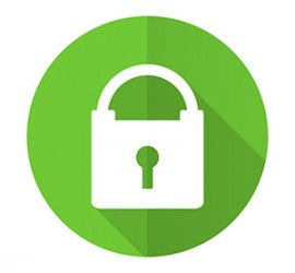 The green security lock is the symbol used to show a website is secure.